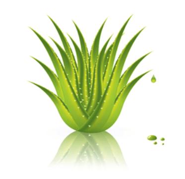 Wet Organics Aloe-based Lubricant (30ml)
